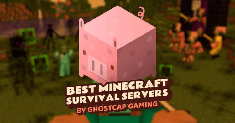 Best Minecraft Survival Servers